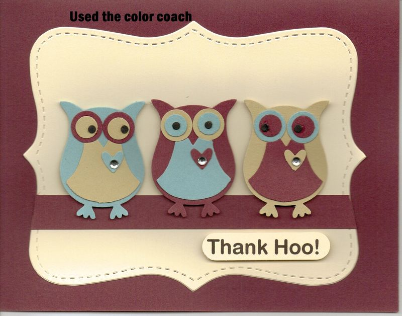 Owl trio - color coach